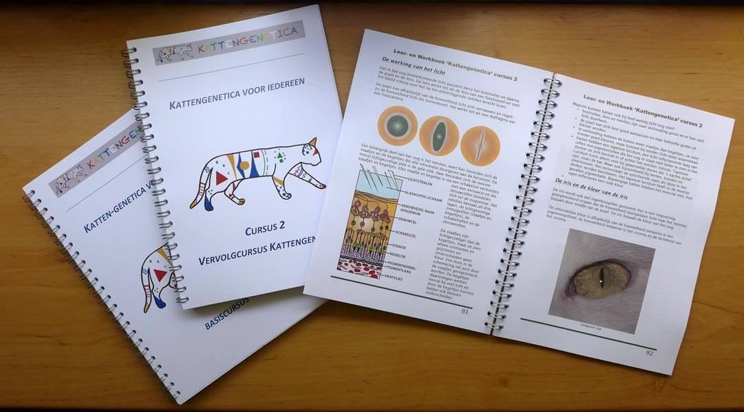 Cursusboek Vervolgcursus